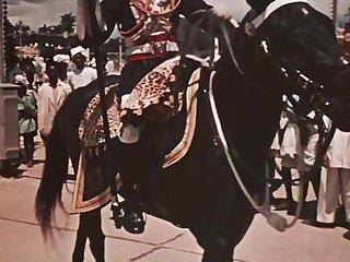 Deprecatory Maharaja Stately
